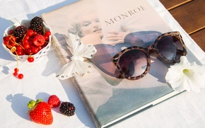 Picture berries, butterfly, glasses, book, Monroe