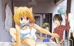 Picture girl, art, neko, anime