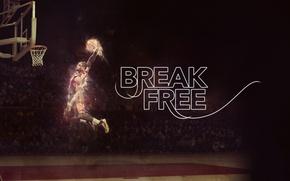 Picture Field, Fire, Basketball, NBA, LeBron James, Hang, Player, Break Free