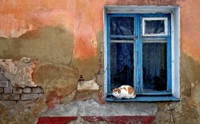 Picture Koshak, Wall, window, devastation