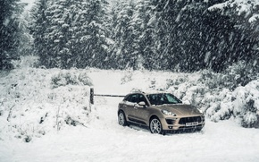 Picture road, Porsche, hill, crossover, Diesel, Macan S