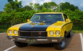 Picture classic, the front, 1972, Buick