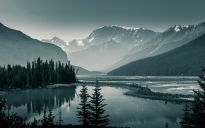 Picture forest, trees, mountains, lake, rocks, Canada, Albert, Banff National Park, Banff