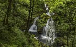 Picture forest, river, England, waterfall, England, Lake District, Colwith Force, River Brathay