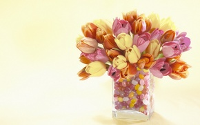 Wallpaper flowers, tulips, vase