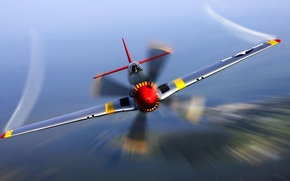 Picture Mustang, USA, fighter, P-51, WWII