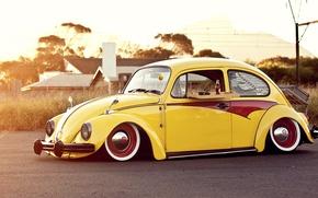 Picture beetle, volkswagen, Volkswagen, beetle, sun, Cola, coke, beatle, bug