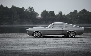 Picture Wallpaper, Mustang, Ford, Shelby, GT500, Eleanor, Ford, legend, muscle car, wallpapers