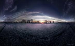 Picture field, dawn, lavender, fish eye