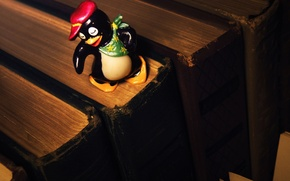 Picture childhood, toy, books, penguin, cap, shawl, surprise, kinder