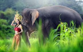 Wallpaper Asian, elephant, girl