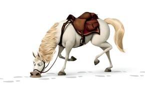 Wallpaper horse, horse, Rapunzel