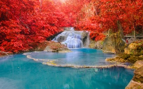 Picture autumn, forest, landscape, waterfall, forest, nature, water, autumn, waterfall