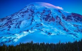 Picture USA, United States, trees, mountain, snow, sunrise, Washington, Seattle, Mount Rainier, United States of America, …