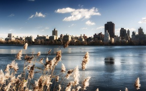 Picture the sky, water, lake, building, new York, USA, Central Park