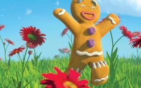 Picture meadow, Shrek, cookie