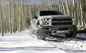 Picture winter, snow, Ford, birch, Ford, Raptor, pickup, Raptor, F-150