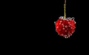 Picture bubbles, cherry, berry
