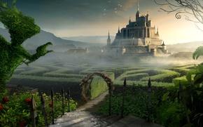 Picture castle, fiction, maze
