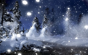 Picture winter, snow, night, Forest, Christmas trees