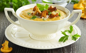 Picture mushroom, soup, the first dish, the first dish, mashed potatoes, mushroom, soup