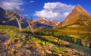 Picture forest, the sky, grass, clouds, snow, trees, mountains, lake, stones, glacier national park