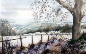 Picture nature, picture, watercolor