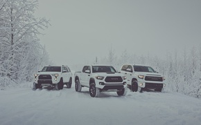 Picture winter, snow, white, Toyota, pickup, snow, pickup, TRD, Tundra, Tacoma