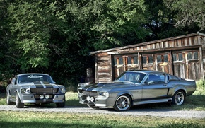 Picture GT500, Ford Mustang, Shelby Eleanor, Ford Mustang