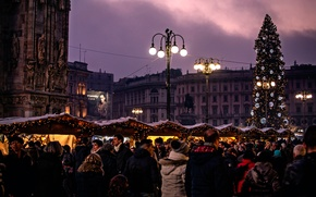 Picture the city, tree, Milan, Milano, The Christmas tree, Piazza Duomo