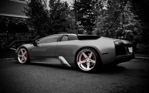 Picture Lamborghini, black and white, casting