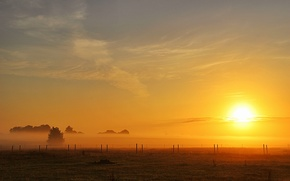 Picture field, the sun, fog, the fence, morning, field, morning, sun, fog, fence