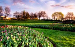 Picture the sky, the sun, trees, Park, castle, spring, Canada, tulips, Canada, sky, park, tulips