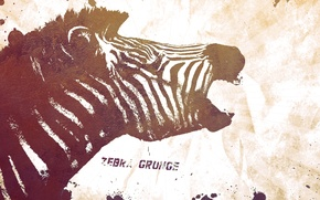 Picture style, the inscription, patterns, paint, colors, Zebra, words, style, patterns, words, 2560x1440, lettering, zebra