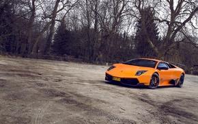 Picture Lamborghini, Murciélago, LP-670