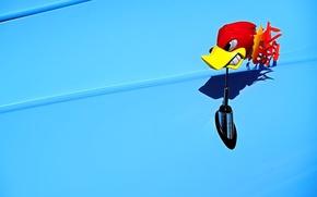 Wallpaper toy, Blue, woodpecker