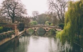 Wallpaper Cambridge, channel, reflection, Claire bridge, trees, England, river