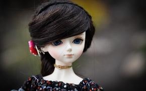 Picture flower, hair, doll, blue eyes, doll, BJD