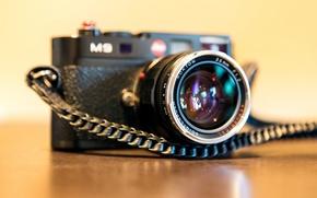 Picture macro, the camera, Voigtlander Nokton