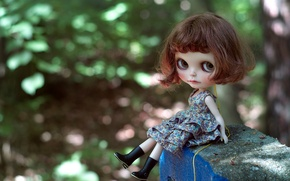 Picture doll, dress, hairstyle, girl, boots