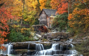 Picture autumn, forest, leaves, trees, nature, house, river