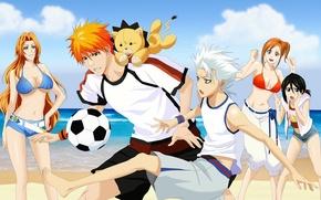 Wallpaper Kurosaki Ichigo, the game, art, drlinux, kon, matsumoto rangiku, guys, sea, hitsugaya toushirou, football, the ...