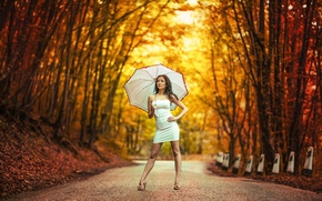 Wallpaper girl, umbrella, dress, bokeh, Road in autumn
