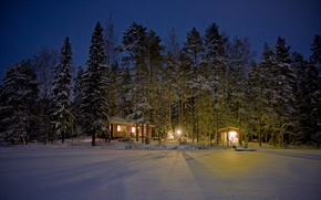 Picture winter, forest, light, snow, trees, night, lights, houses, Finland