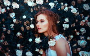 Picture girl, face, hair, roses