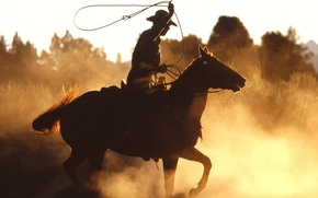 Picture horse, cowboy, America