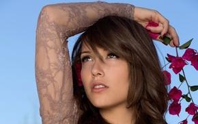 Picture flower, girl, face, model, Malena Morgan