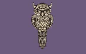 Picture purple, owl, bird, minimalism, owl