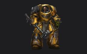 Wallpaper two-headed eagle, hammer, Warhammer 40k, yellow, terminator armor