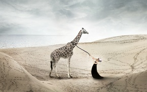 Picture girl, the situation, giraffe
